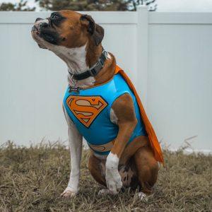 Supermä
